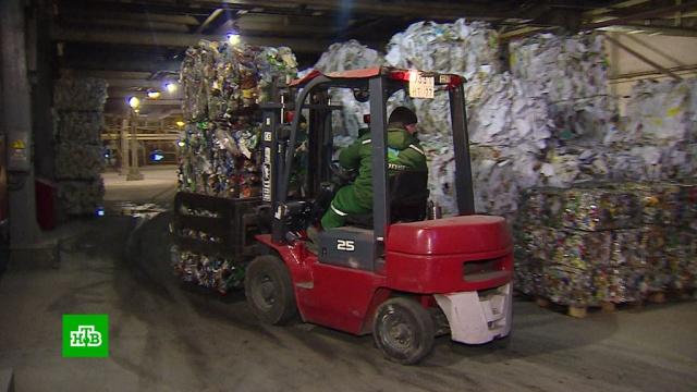 Роспотребнадзор рекомендовал приостановить раздельный сбор мусора.Роспотребнадзор, коронавирус, мусор, экология, эпидемия.НТВ.Ru: новости, видео, программы телеканала НТВ