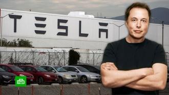 Маск возобновляет производство на заводе Tesla иготовится каресту