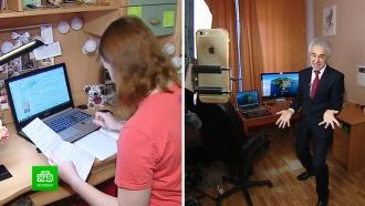 Творческий подход: выпускники и учителя готовятся к «коронавирусному» ЕГЭ в Петербурге