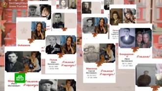 Политики требуют наказать присылавших фото нацистов для шествия «Бессмертного полка»