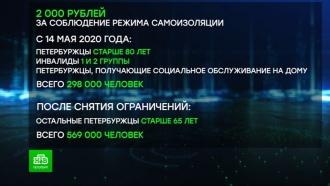 В Петербурге начинаются пенсионные выплаты за самоизоляцию
