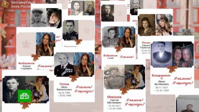 СК завел дела после размещения портретов Гитлера на сайтах «Бессмертного полка».Великая Отечественная война, День Победы, Интернет, Следственный комитет, расследование, скандалы.НТВ.Ru: новости, видео, программы телеканала НТВ