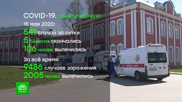 В Петербурге растет число больных коронавирусом.Санкт-Петербург, болезни, коронавирус, эпидемия.НТВ.Ru: новости, видео, программы телеканала НТВ