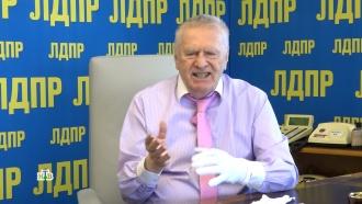 «Ничего не вешайте на себя»: Жириновский считает опасными «амулеты» от коронавируса.НТВ.Ru: новости, видео, программы телеканала НТВ
