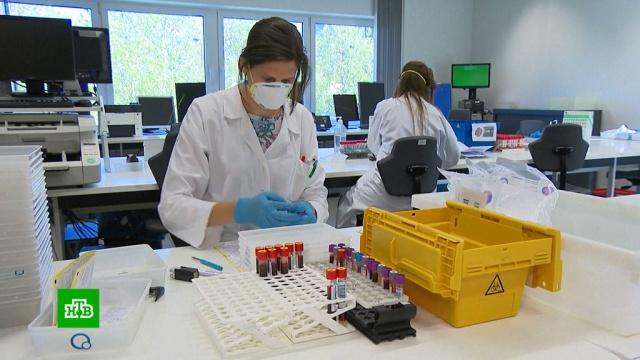 ВБельгии тестируют метод спасения пациентов сCOVID-19 без ИВЛ.Бельгия, Европа, Франция, коронавирус, медицина, наука и открытия.НТВ.Ru: новости, видео, программы телеканала НТВ