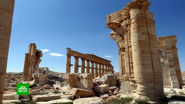 Список потерь огромен: как выглядит Пальмира через 5 лет после атаки боевиков.Исламское государство, Сирия, археология, терроризм, памятники.НТВ.Ru: новости, видео, программы телеканала НТВ