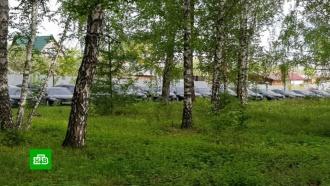 Найденные вчелябинском лесу иномарки используют для борьбы с<nobr>COVID-19</nobr>