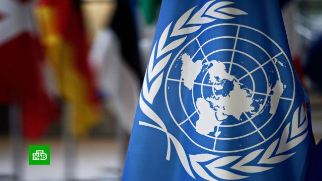 США заблокировали в ООН инициативы о Венесуэле и Палестине.Венесуэла, Израиль, ООН, Палестина, США, территориальные споры.НТВ.Ru: новости, видео, программы телеканала НТВ