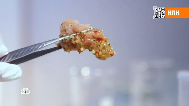 Вготовом курином шашлыке нашли сальмонеллы икишечную палочку.еда, здоровье, кулинария, продукты.НТВ.Ru: новости, видео, программы телеканала НТВ