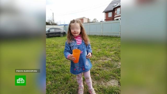 Соседка видела пропавшую в Псковской области девочку, но не остановила ее.Псковская область, волонтеры, дети и подростки, поисковые операции.НТВ.Ru: новости, видео, программы телеканала НТВ