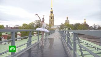 Грандиозный концерт онлайн: как Петербург поздравляют сднем рождения