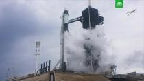 Запуск корабля Crew Dragon компании SpaceX отложили за 16 минут до старта.запуски ракет, Илон Маск, США.НТВ.Ru: новости, видео, программы телеканала НТВ