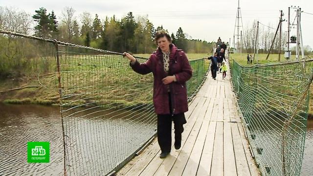 Почему жителям деревни Дроздово придется подождать хорошей дороги ибезопасного моста.Ленинградская область, дороги, мосты.НТВ.Ru: новости, видео, программы телеканала НТВ