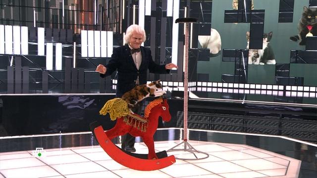 Куклачёв рассказал о пользе кошек в борьбе с коронавирусом.животные, коронавирус, кошки, шоу-бизнес, эксклюзив.НТВ.Ru: новости, видео, программы телеканала НТВ