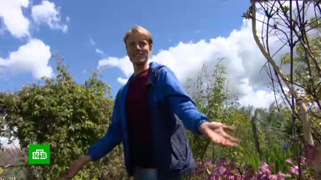 Белорусский блогер отказался от спортивной карьеры имодельного бизнеса ради садоводства.Белоруссия, Интернет, блогосфера, растения, цветы.НТВ.Ru: новости, видео, программы телеканала НТВ