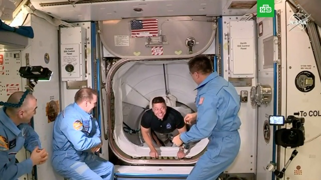 Астронавты сCrew Dragon перешли на МКС.Илон Маск, США, космонавтика, космос.НТВ.Ru: новости, видео, программы телеканала НТВ