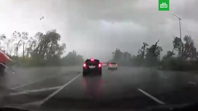 По Белгородской области прошелся мощный ураган.Белгородская область, штормы и ураганы.НТВ.Ru: новости, видео, программы телеканала НТВ