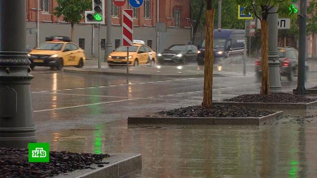 Май стал самым влажным за всю историю метеонаблюдений в Москве.Москва, погода.НТВ.Ru: новости, видео, программы телеканала НТВ