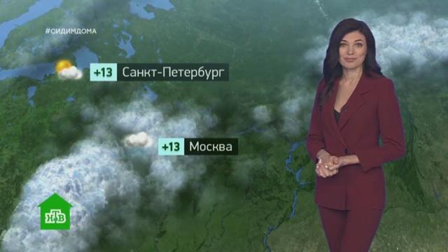 Утренний прогноз погоды на 1июня.погода, прогноз погоды.НТВ.Ru: новости, видео, программы телеканала НТВ