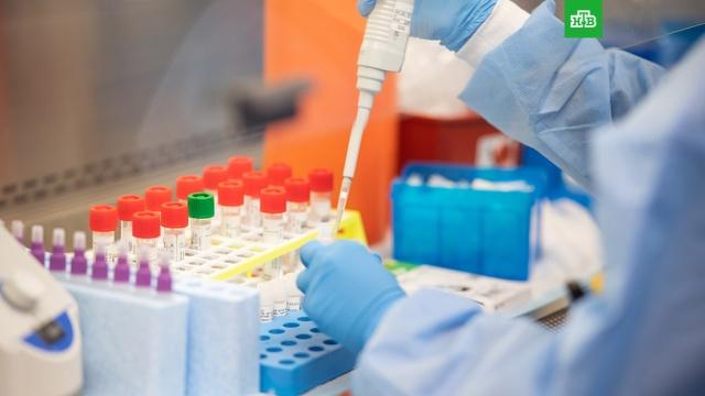 Названа дата поступления в больницы российского лекарства от COVID-19.Первые 60 тысяч курсов нового отечественного препарата от коронавируса поступят в больницы уже 11 июня..коронавирус, медицина, эпидемия.НТВ.Ru: новости, видео, программы телеканала НТВ