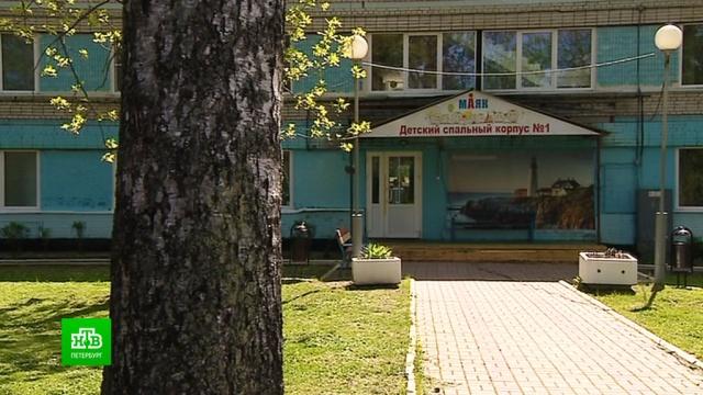 Детские лагеря приспосабливают к жестким требованиям Роспотребнадзора.Ленинградская область, дети и подростки, коронавирус, отдых и досуг, эпидемия.НТВ.Ru: новости, видео, программы телеканала НТВ
