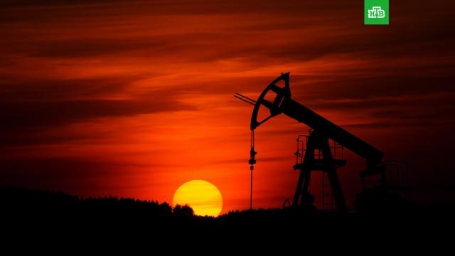 Цена нефти Brent поднялась выше 40 долларов за баррель впервые с 6 марта.Цена североморской смеси нефти Brent поднялась выше отметки в 40 долларов за баррель впервые с 6 марта, свидетельствуют данные торгов.биржи, нефть.НТВ.Ru: новости, видео, программы телеканала НТВ