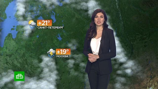 Прогноз погоды на 5июня.погода, прогноз погоды.НТВ.Ru: новости, видео, программы телеканала НТВ