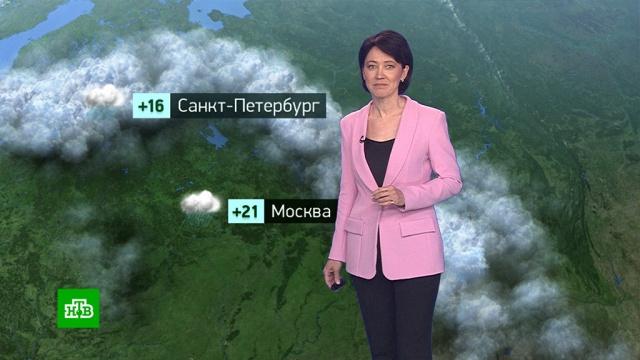 Утренний прогноз погоды на 4июня.погода, прогноз погоды.НТВ.Ru: новости, видео, программы телеканала НТВ