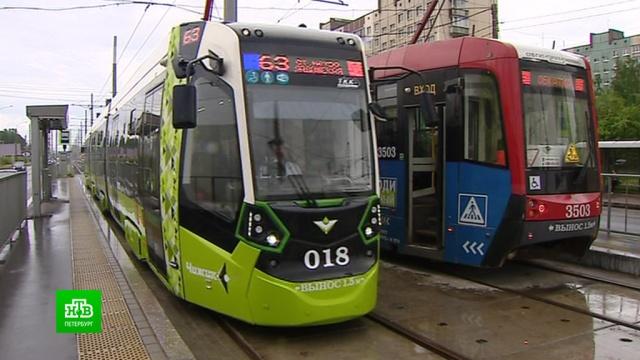 Петербургские трамваи делятся пассажирами.Санкт-Петербург, общественный транспорт, трамваи.НТВ.Ru: новости, видео, программы телеканала НТВ