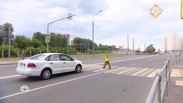 Как правильно пропускать пешеходов на зебре.ДТП, автомобили, дорожное движение, пешеходы.НТВ.Ru: новости, видео, программы телеканала НТВ