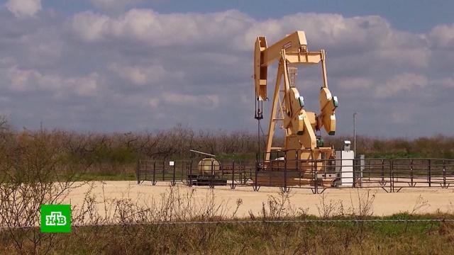 Нефть отреагировала на продление сделки ОПЕК+ сдержанным ростом.ОПЕК, биржи, нефть, экономика и бизнес.НТВ.Ru: новости, видео, программы телеканала НТВ