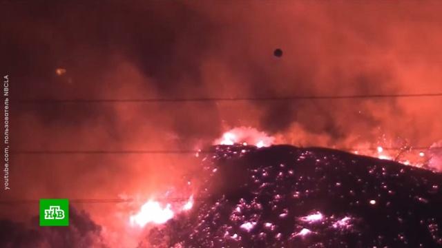 ВКалифорнии бушуют лесные пожары.США, лесные пожары, пожары, стихийные бедствия.НТВ.Ru: новости, видео, программы телеканала НТВ