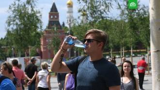 Тридцатиградусная жара вернется вевропейскую часть России.НТВ.Ru: новости, видео, программы телеканала НТВ
