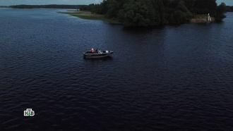 Охота, рыбалка ипоиски клада: чем заняться этим летом.НТВ.Ru: новости, видео, программы телеканала НТВ