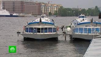 Судоходные компании просят разрешить им вернуться на реки и каналы Петербурга