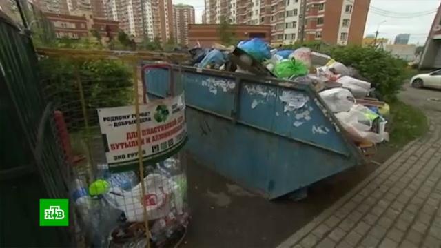 Активисты просят законсервировать мусоропроводы в многоэтажках.жилье, загрязнение окружающей среды, законодательство, мусор.НТВ.Ru: новости, видео, программы телеканала НТВ