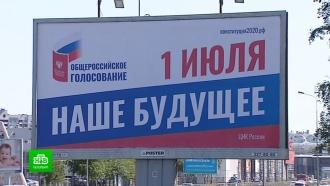 Петербургский омбудсмен раскритиковал подготовку чиновников к голосованию 1 июля