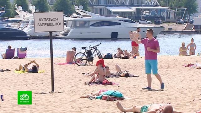 В самый жаркий день июня петербуржцы оккупировали парки и пляжи.Санкт-Петербург, жара, лето, погода, реки и озера, рекорды.НТВ.Ru: новости, видео, программы телеканала НТВ
