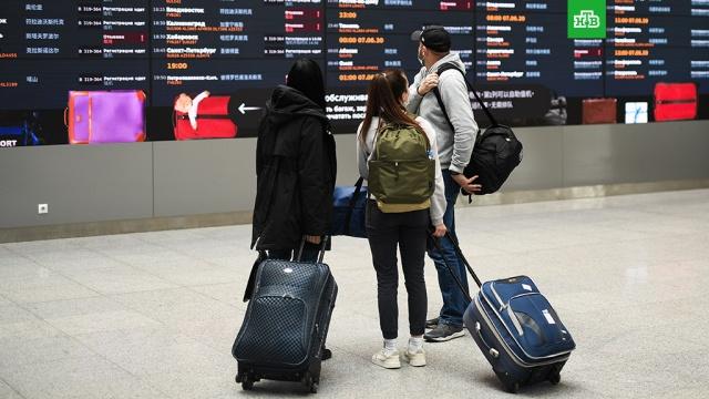 Восстановление международных полетов предложили начать сСНГ.авиакомпании, авиация, коронавирус, эпидемия.НТВ.Ru: новости, видео, программы телеканала НТВ