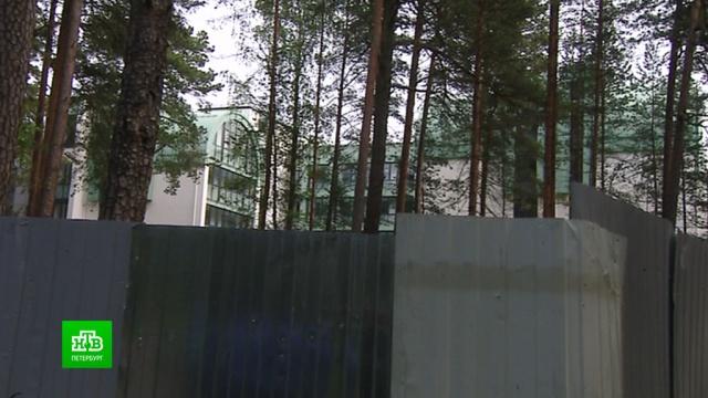 Корпуса санатория на берегу Финского залива реконструируют под частные апартаменты.Санкт-Петербург, Финский залив, здоровье, отдых и досуг, строительство.НТВ.Ru: новости, видео, программы телеканала НТВ