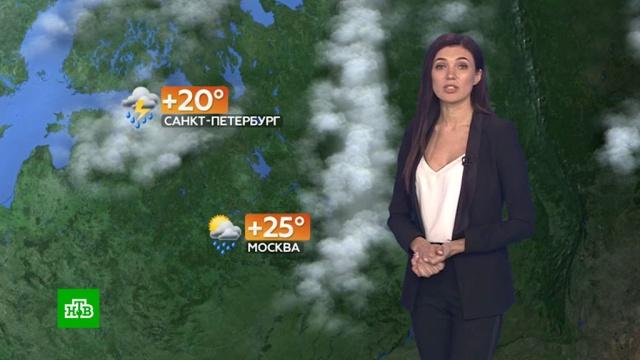 Прогноз погоды на 1 июля.погода, прогноз погоды.НТВ.Ru: новости, видео, программы телеканала НТВ