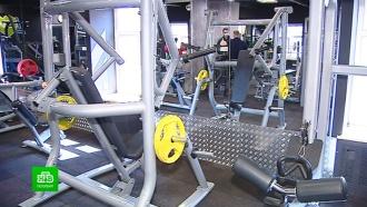 Музеи и фитнес-центры Петербурга возобновляют работу с 6 июля