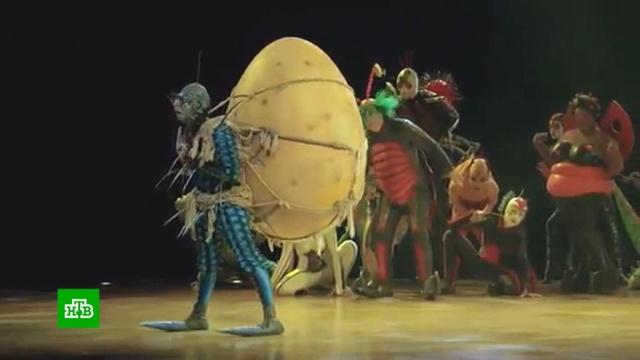 Cirque du Soleil попросил защиты от кредиторов.Канада, банкротства, коронавирус, цирк, эпидемия.НТВ.Ru: новости, видео, программы телеканала НТВ