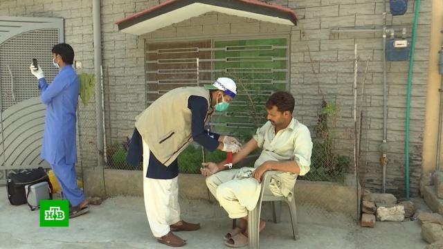 ВПакистане расцвел черный рынок крови переболевших COVID-19.Пакистан, донорство, коронавирус, медицина, эпидемия.НТВ.Ru: новости, видео, программы телеканала НТВ