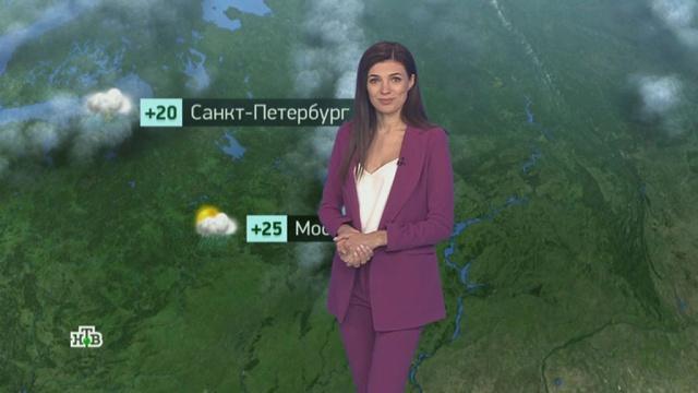 Утренний прогноз погоды на 1июля.погода, прогноз погоды.НТВ.Ru: новости, видео, программы телеканала НТВ