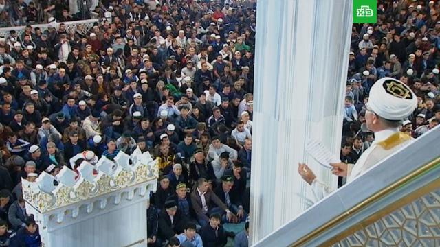 Курбан-байрам: традиции исуть праздника.ЗаМинуту, ислам, религия, торжества и праздники.НТВ.Ru: новости, видео, программы телеканала НТВ