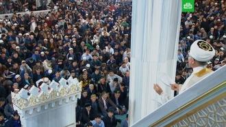 <nobr>Курбан-байрам</nobr>: традиции исуть праздника