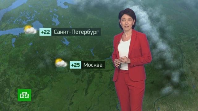 Утренний прогноз погоды на 2июля.погода, прогноз погоды.НТВ.Ru: новости, видео, программы телеканала НТВ