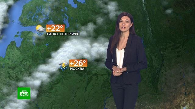 Прогноз погоды на 4июля.погода, прогноз погоды.НТВ.Ru: новости, видео, программы телеканала НТВ
