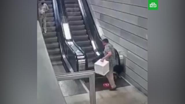 Пассажир едва не провалился вмеханизм эскалатора новой станции.Москва, метро, общественный транспорт.НТВ.Ru: новости, видео, программы телеканала НТВ